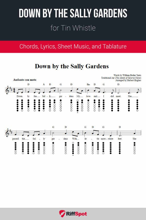 8c8b3dee5caac4f8e9f9c2d1d1976f6a - The Sally Gardens Tin Whistle Notes