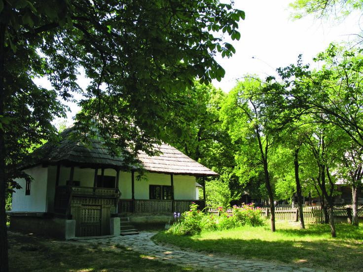 Trăisteni, Prahova, sec. al XIX-lea