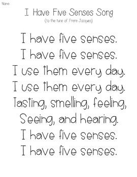 I Have Five Senses Song