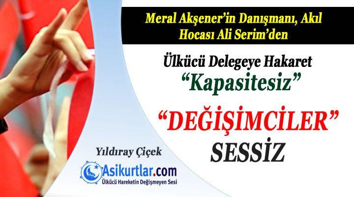 Ali Serim Suskunluğu ve MHP'ye Yönelik Operasyonlar!