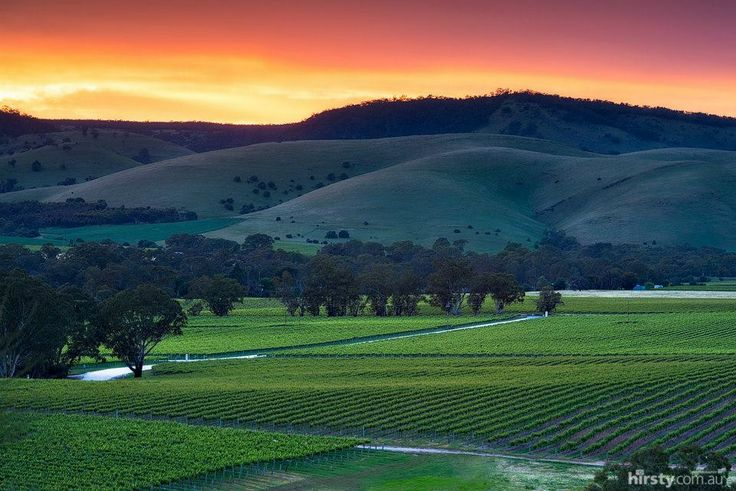 Beautiful #Barossa Valley, Australia. #wine #wineregion