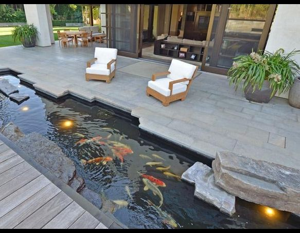 Love the built-in pond