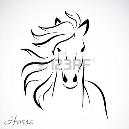 un caballo en el fondo blanco Foto de archivo