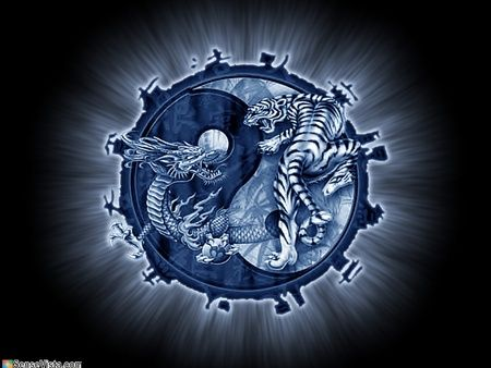 17 Best images about Yin Yang on Pinterest | Tribal dragon tattoos ...