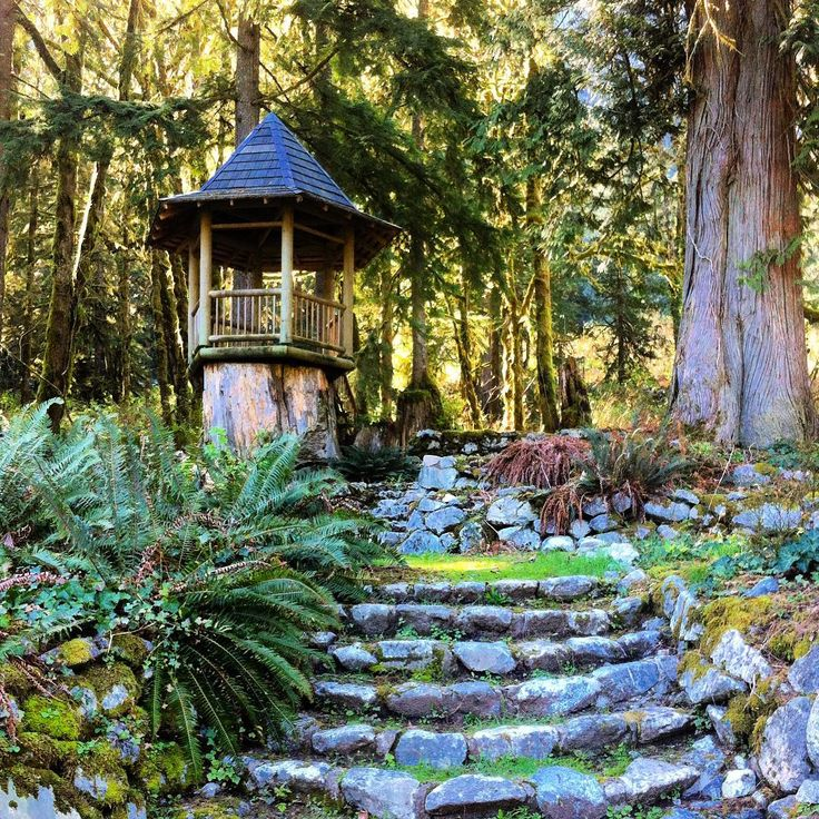 The grounds at #wigwaminn look like a #magical #hobbitforest #indianarm #indianarmbc #explorebc