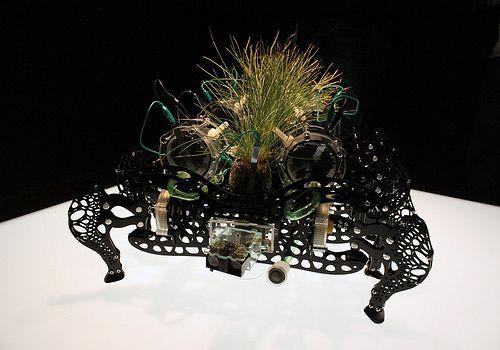 El #Arte de la #Transmutación - Cultura Colectiva