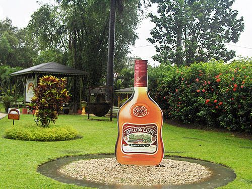 Appleton Rum Estate Tour in South Coast, Jamaica. Jamaica tours, cruise shore excursions and day trips are carefully picked for your excitement. Book with Paradise Palms Jamaica Villa http://www.paradisepalmsjamaica.com/ http://www.paradisepalmsjamaica.com