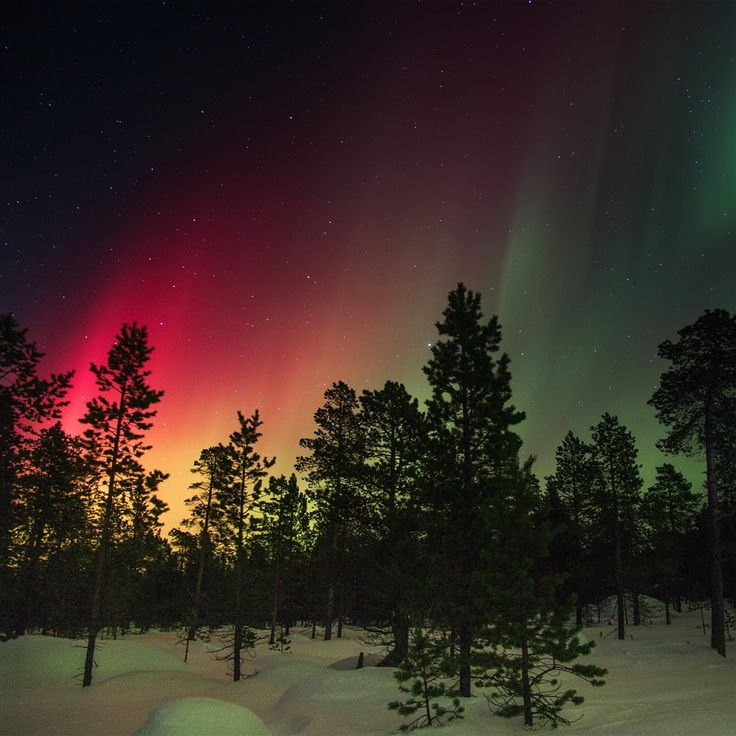 Snow Sky Aurora Night Winter Christmas #Retina #iPad #Air #wallpaper