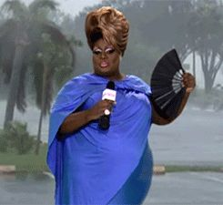 WiffleGif has the awesome gifs on the internets. rupauls drag race latrice royale gifs, reaction gifs, cat gifs, and so much more.