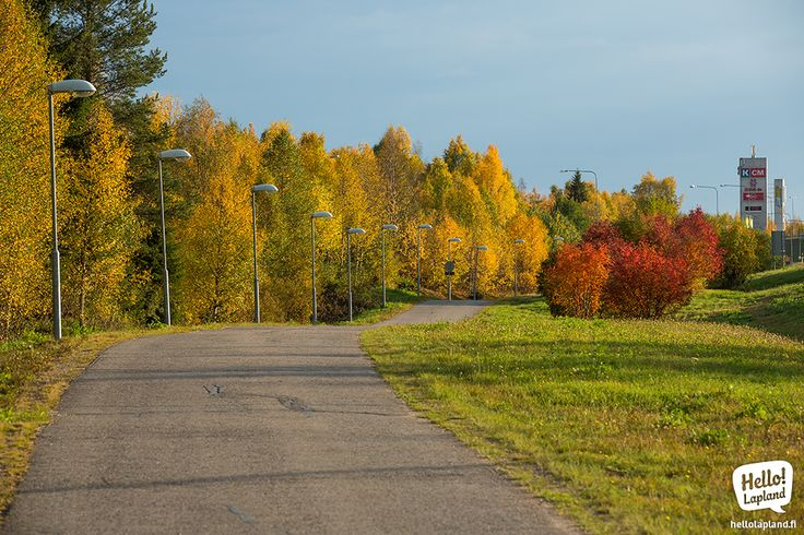 The colors of the Autumn.