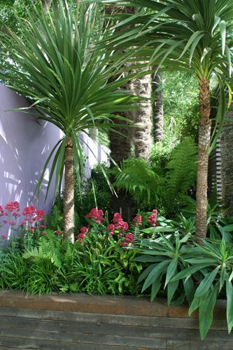 Tropical Garden Ideas Uk the 25+ best balinese garden ideas on pinterest | tropical garden