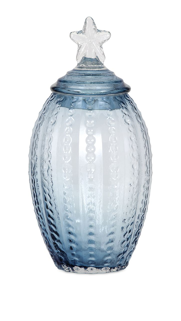 Conch Shell Large Glass Canister