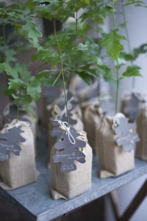 oak tree wedding favor by cristina