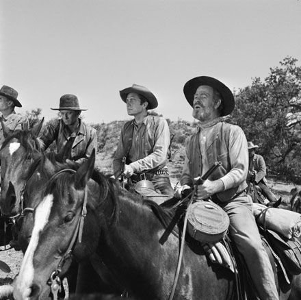 Image result for rawhide tv horses images