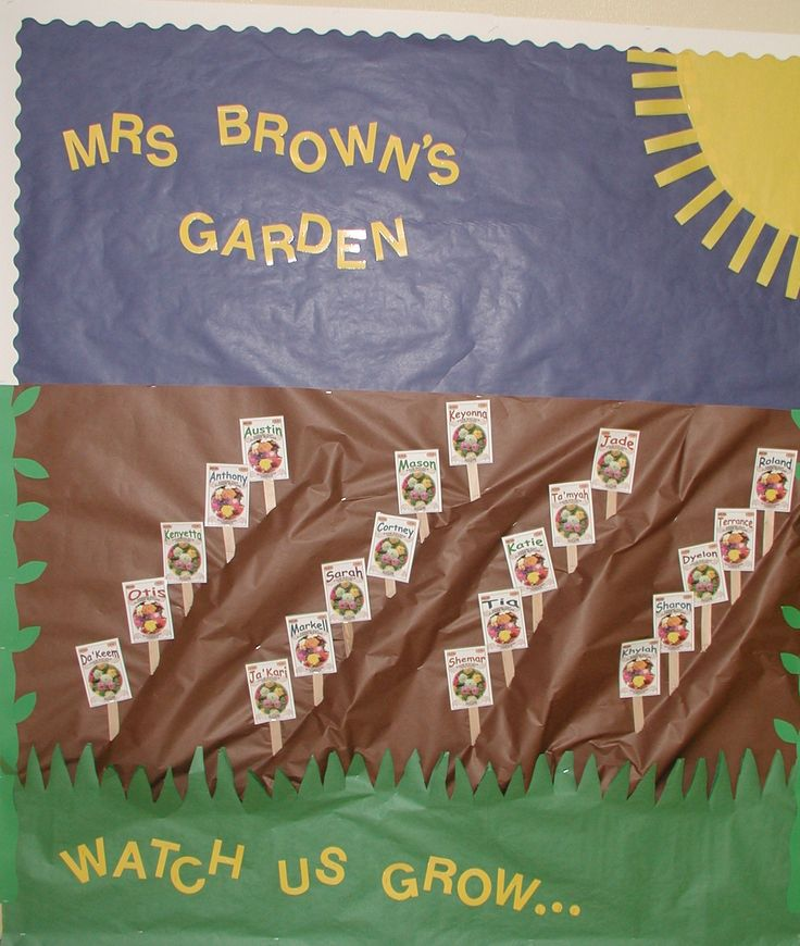 beginning kindergarten bulletin board