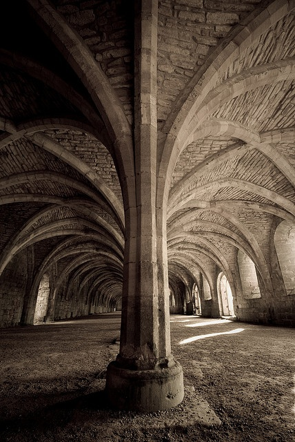 Fountains Abbey by mologo