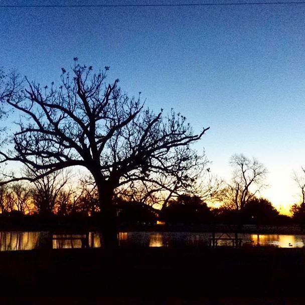 Work views #photography #naturephotography #trees #outdoors #sunrise #pond #reflections #victoriatx #parksandrec