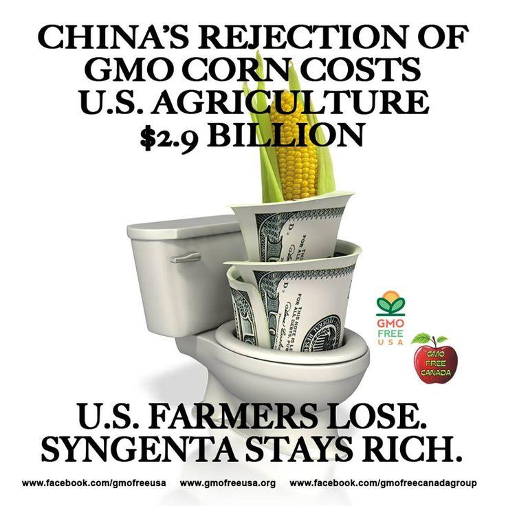http://www.rawstory.com/rs/2014/04/17/chinas-ban-on-gmo-corn-costs-us-up-to-2-9-billion-grain-association-says/
