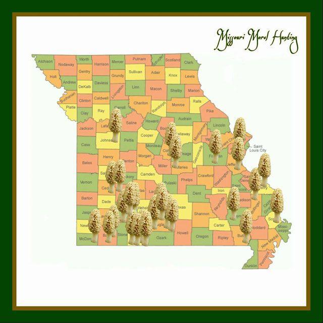 Missouri morel mushroom map (facebook)