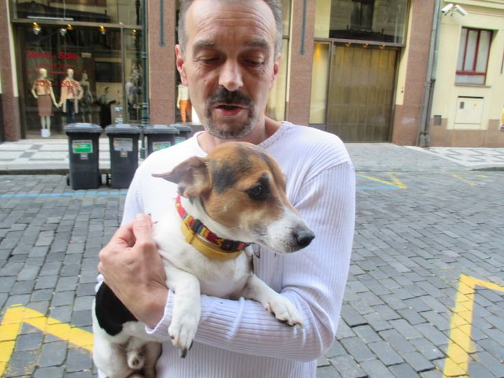 kamarád Kubík pes