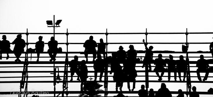 Notas humanas . . . by Gustavo Escalante on 500px