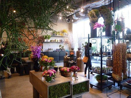 ★青山 オーガニックカフェ Nicolai Bergmann Nomu の画像|Organic & Holistic Life