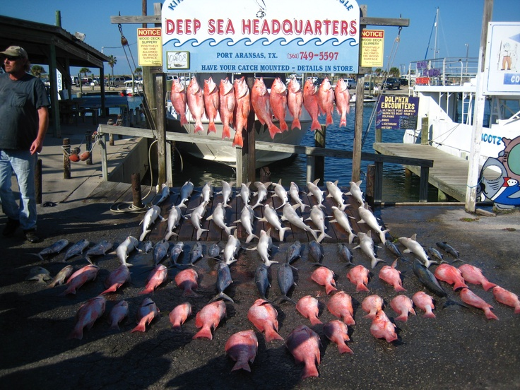 17 best images about corpus christi texas on pinterest for Corpus christi fishing spots