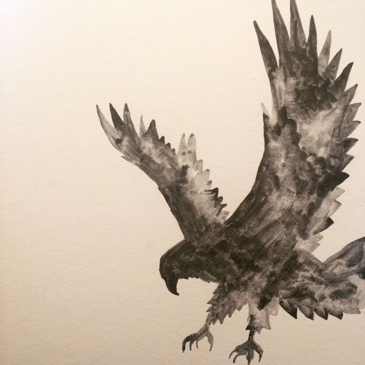 Eagle painted with graphite.