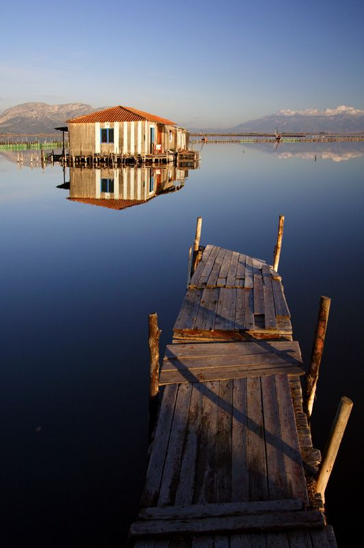 At Messolonghi lagoon in Etoloakarnania (Central Greece)