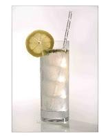 Gin Fizz    50 ml Gin (una medida)  30 ml Jugo de Limón  10 ml Jarabe de Goma  80 ml Soda    Decoración :  Rodaja de Limón; Removedor    Preparación :  Agregar hielo en la coctelera y luego verter todos los ingredientes a excepción del agua con gas. Batir y servir en un vaso highball y completar con la soda y decorar el cóctel rodaja de limón y un removedor.
