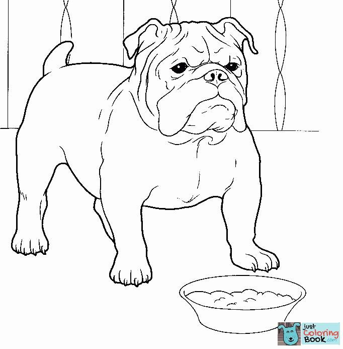 Pin En Dog Coloring Pages