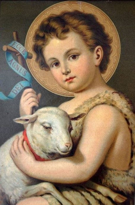 Little Lamb lead me home to you!