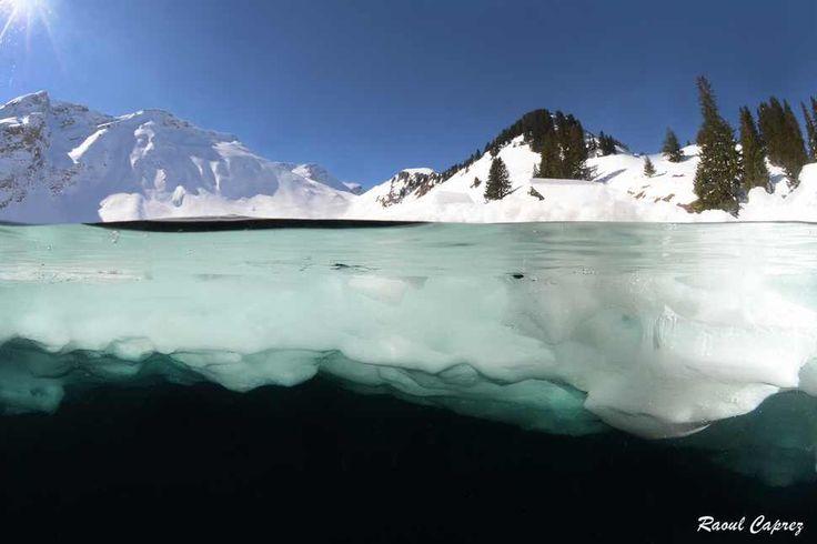 Switzerland - Astonishing Underwater Photography  Best of Web Shrine