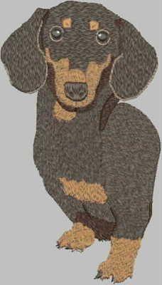 {Dog- Weiner Dog- designsbycuties-6218256-68068 K.H.} Free Embroidery Designs, Cute Embroidery Designs