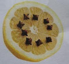 Hoe wespen verjagen tips. Wespen hebben een hekel aan kruidnagel. Dus prik enkele kruidnagels in een doormidden gesneden citroen of strooi wat kruidnagels ...