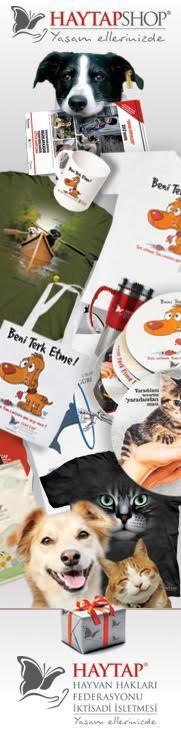 HAYTAP ÜRÜNLERİ, Haytap Shop İnternet Mağazası | kedi maması, köpek maması, kedi kumu, pro plan, hills, royal canin, pet shop, kedi ve köpek oyuncakları, petshop