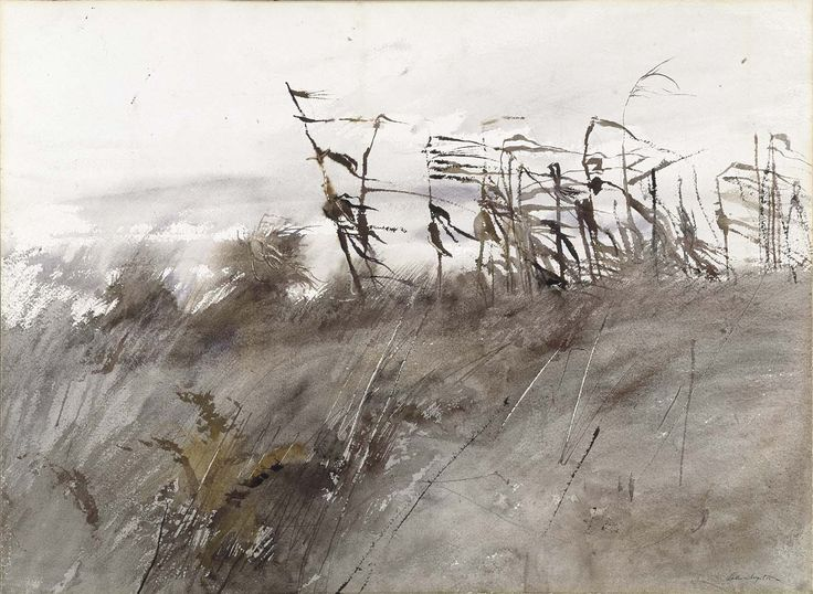 [Andrew Wyeth] The beauty in the dry smell of the stalks and the brittle sound in the wind brings back farm memories...we had lots of mature corn on a pig farm   K.W.