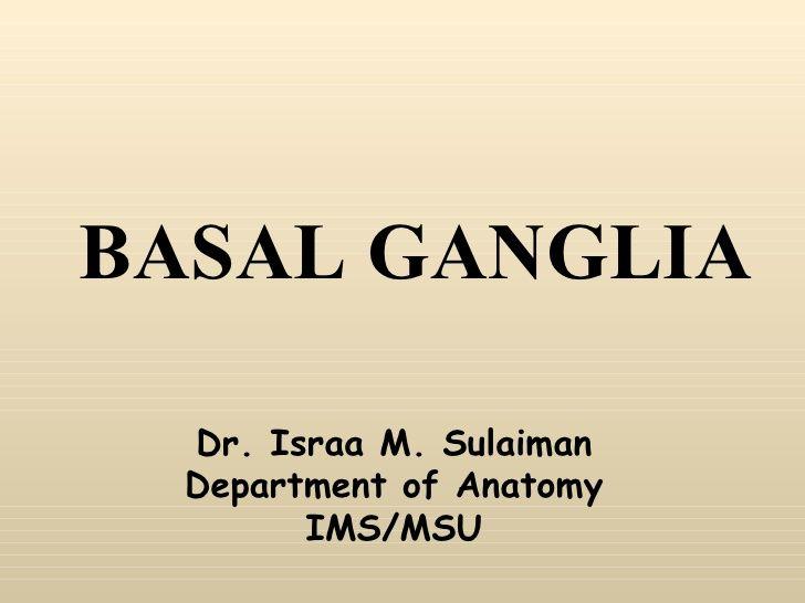 Basal Ganglia Anatomy--slides
