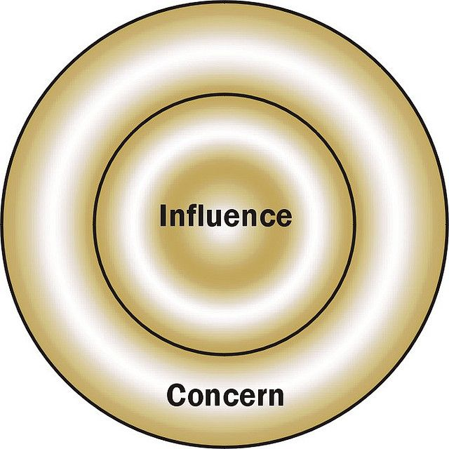 Concentric Circles of Concern Essay Sample