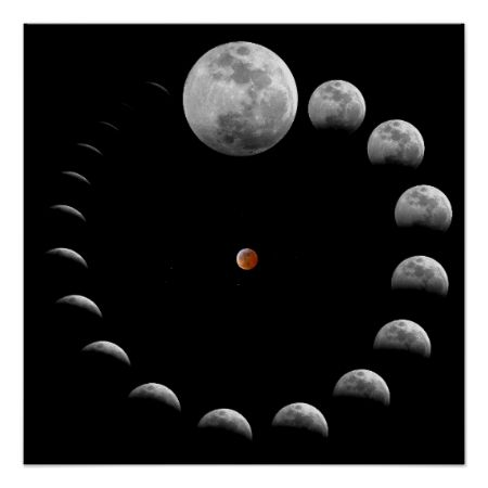 Lunar Moon Phases Posters