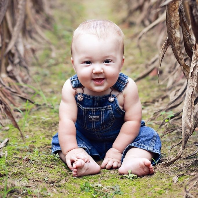 6 month pictures in a corn field! love my sweet boy!