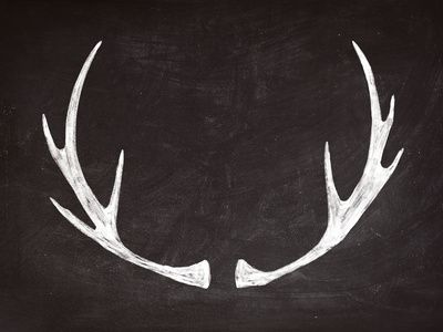 "Chalkboard Art - Antlers Art Print. except i would add ""when I go to sleep, I…"