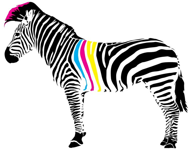 Zebra CMYK
