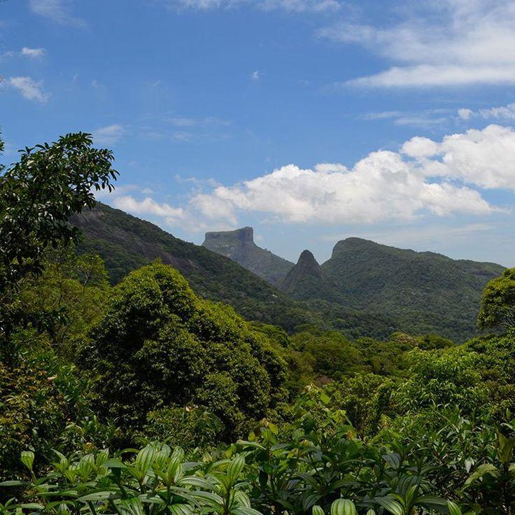 O Parque Nacional da Tijuca é a maior floresta urbana do mundo. Fazem parte dele as paisagens internacionalmente conhecidas como a Pedra da Gávea e o Corcovado, onde fica a estátua do Cristo Redentor. Além dessas atrações também é possível realizar diversas trilhas ecológicas para aproveitar a região. Foto do #wikiparques #photooftheday #igersbrasil #instanature #instagood #nofilter #igdaily #wikiparques #florestadatijuca