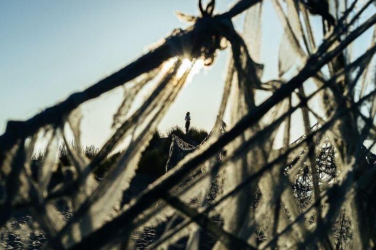 Maria Kley (@mariakley) Oerol Festival Terschelling The Netherlands Jun. 18 2017. Copyright  2017 Alex Hamstra Photography . . . . . . . #tsukumogami #mariakley #artinstallation #silhouette #shotwithlove #photographyislife #sun #terschelling #oerol #agameoftones #vscofilm #moodygrams #iglobal_photographers #rsa_portraits #contemporaryphotography #igfriends_valledaosta #vsco #vsco #vscocam #igersholland #super_holland #dutch_connextion #portraitsmag #pixel_ig #portraitmood #vscomood…
