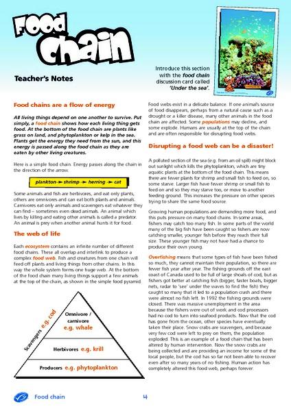 Food Chain Lesson Plan Lesson Food chains
