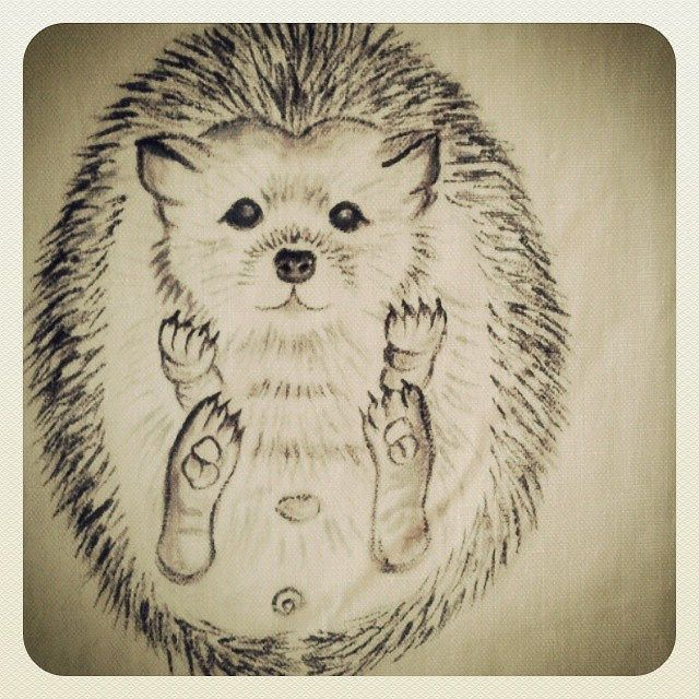 #animal #drawing #hedgehog #cute #shebbodesign..drawn on fabric..painted a few hedgehog on stones years ago...taslar uzerine uzun zaman once resmettigim bebek #kirpi yi simdi kumasa cizdim.. | by ShebboDesign