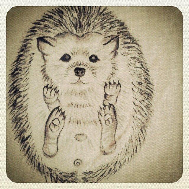 #animal #drawing #hedgehog #cute #shebbodesign..drawn on fabric..painted a few hedgehog on stones years ago...taslar uzerine uzun zaman once resmettigim bebek #kirpi yi simdi kumasa cizdim.. | by ShebboDesign