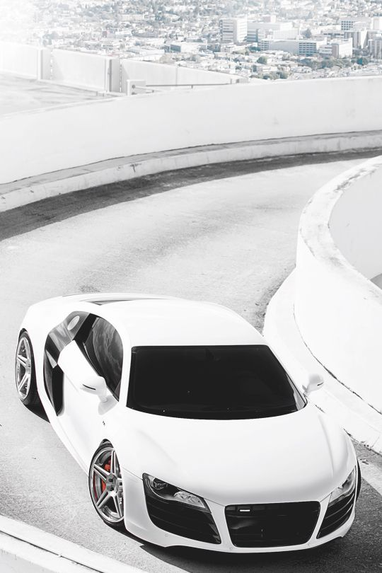 italian-luxury:  Bianco R8 | More