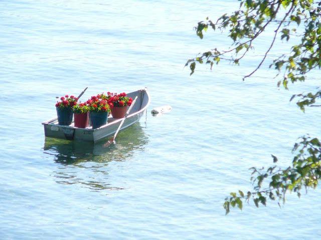 """""""Conquiste a porção que a Vida deixou especialmente para você. Ela é sempre maior que os sonhos mais loucos que não realizamos. É uma reserva amorosa do Criador para a sua criatura mais amada:  Não se perca no medo de arriscar-se, não tenha pressa em passar pela vida, ao contrário, aprecie o caminho sem se importar com o destino da chegada. Estamos num grande barco, onde cada um deve remar em favor do outro. O remo é o amor, o barco a Vida e o mar, é claro que é Deus Vamos remar? Seja feliz"""